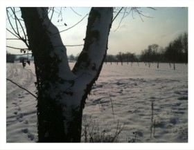 hiver-nantheuil_4